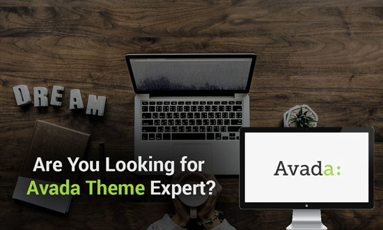 Are You Looking for Avada Themes Expert