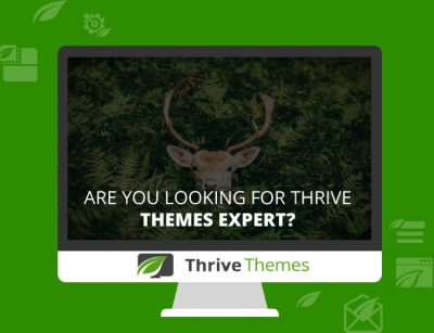 thrive-theme-Experts